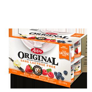 Astro Original Lactose Free Vanilla / Strawberry / Raspberry / Blueberry 2 X 100 g