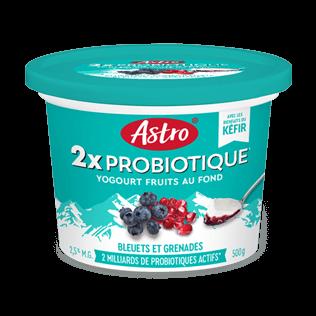 Kéfir probiotique Astro Original Bleuets Grenades 500 g