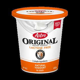 Astro® Original Lactose Free Plain 6% 650 g