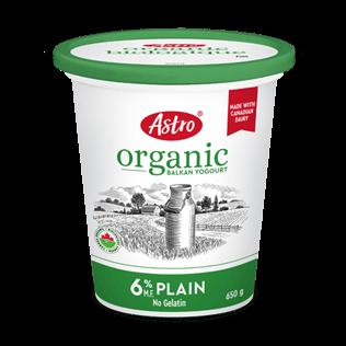 Astro® Original Balkan Organic Plain 6% 650 g