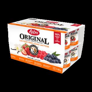 Astro® Original Lactose Free Vanilla / Strawberry / Raspberry / Blueberry 12 x 100 g