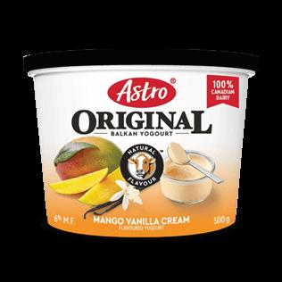Astro® Original Balkan Mango Vanilla Cream 500g